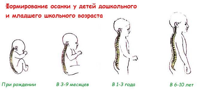 Матрас для ребенка дошкольника должен соответствовать возрасту